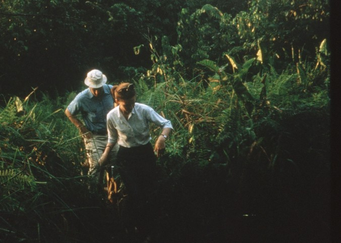 Peace Corps staff member Dick Hyler and his wife Maureen join me on a hike through the jungle.