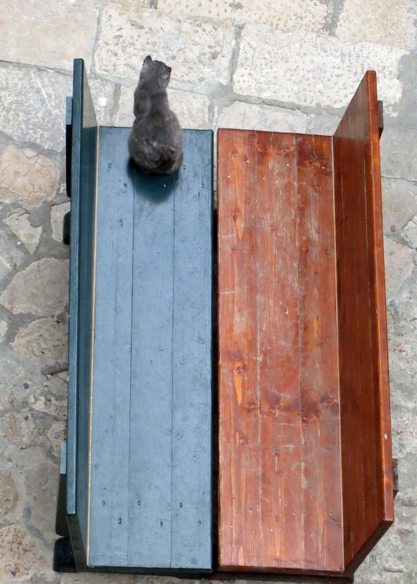 My obligatory cat photo from Dubrovnik. I loved the contrast of the two benches that had been shoved together.