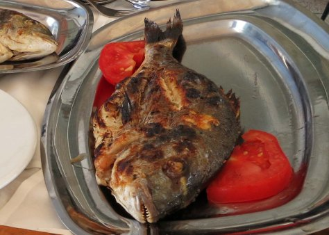 One of several courses from our expensive Greek lunch.