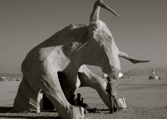 Regional art has been added to Burning Man over the last three years. This Texas Longhorn came from Texas. (Photo by Tom Lovering)