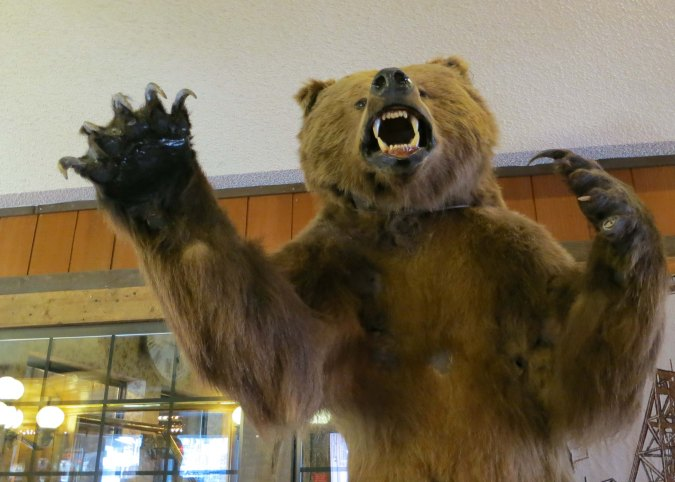Guests are greeted by a grizzly when they enter Tonopah Station on Highway 95 in Nevada.