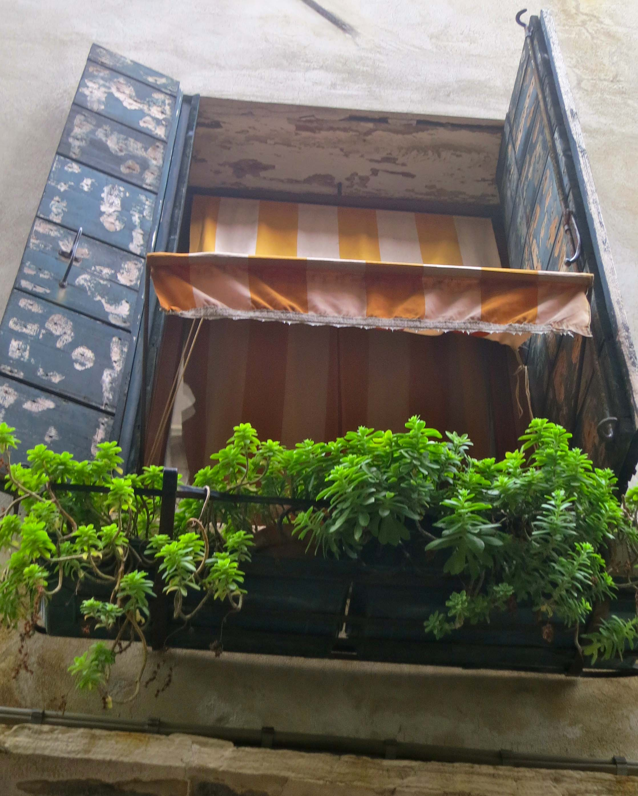 Colorful flower box in Venice Italy.