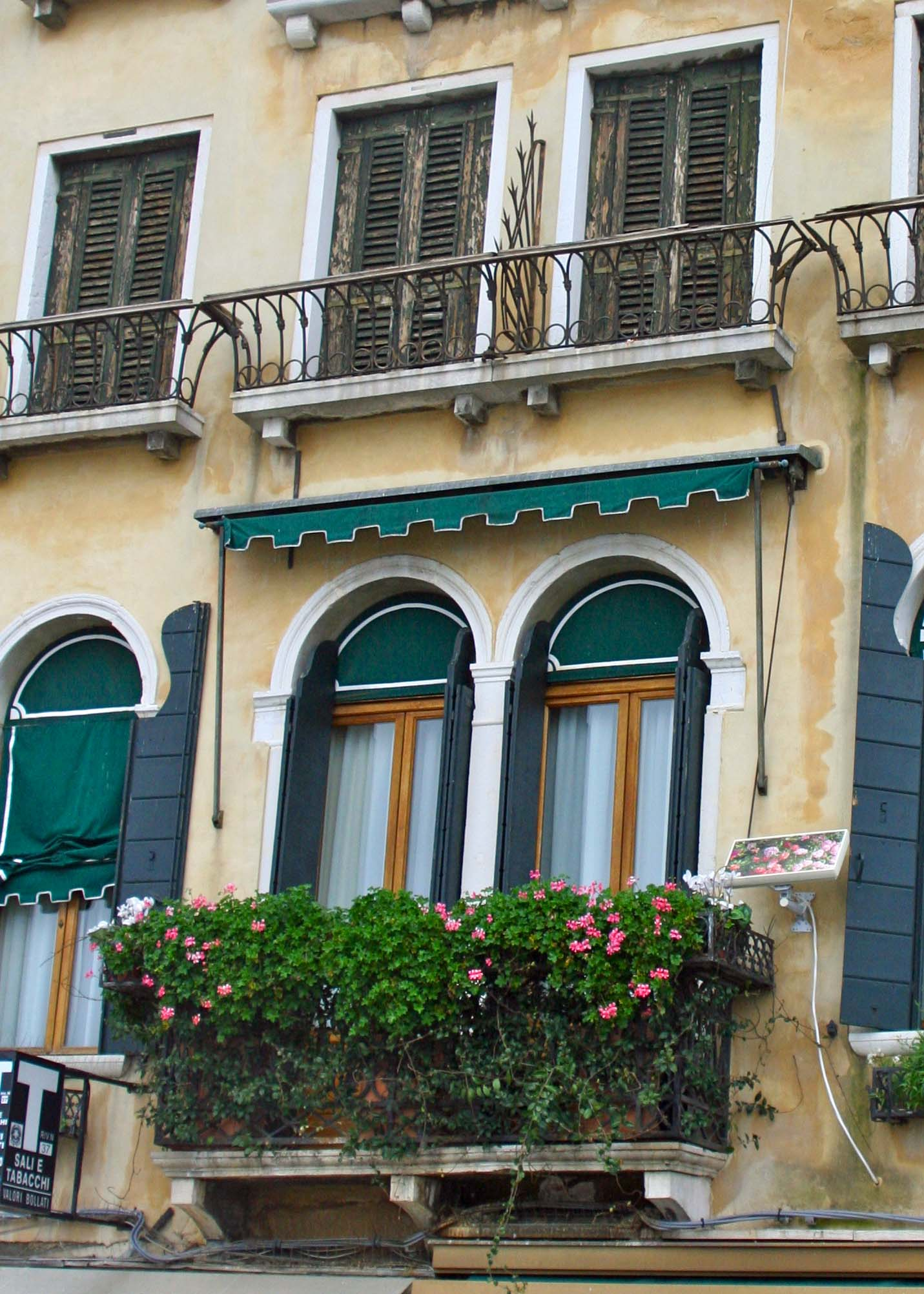 Another example of window flower boxes in Venice. (Photo by Peggy Mekemson.)