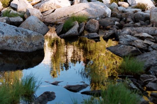 Sierra pool