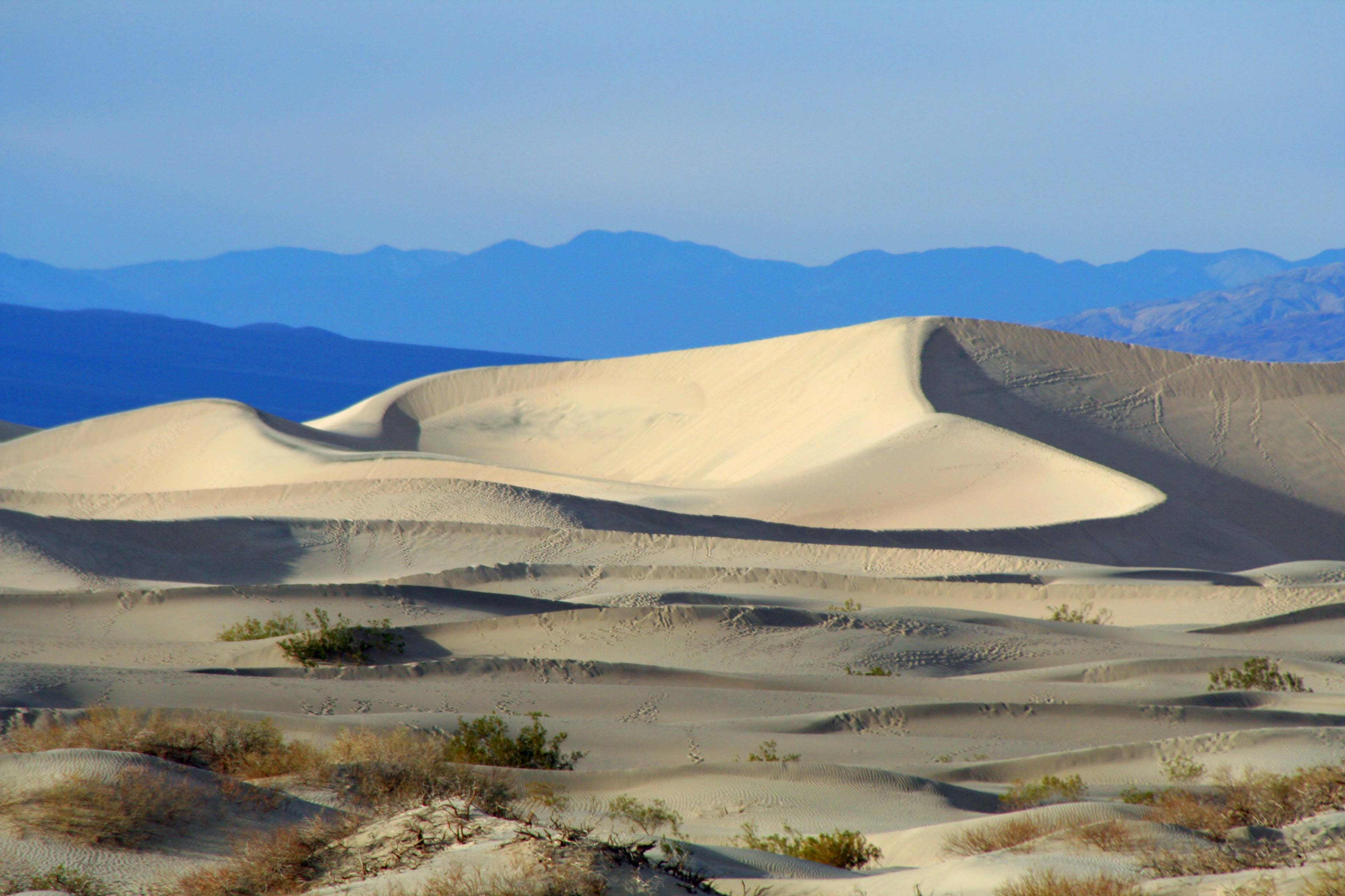 Sand Dunes in Death Valley National Park.