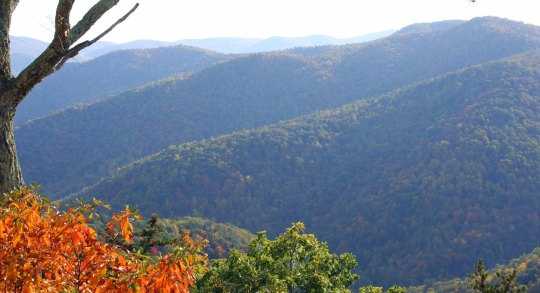 Fall colors of Shenandoah National Park in Virginia