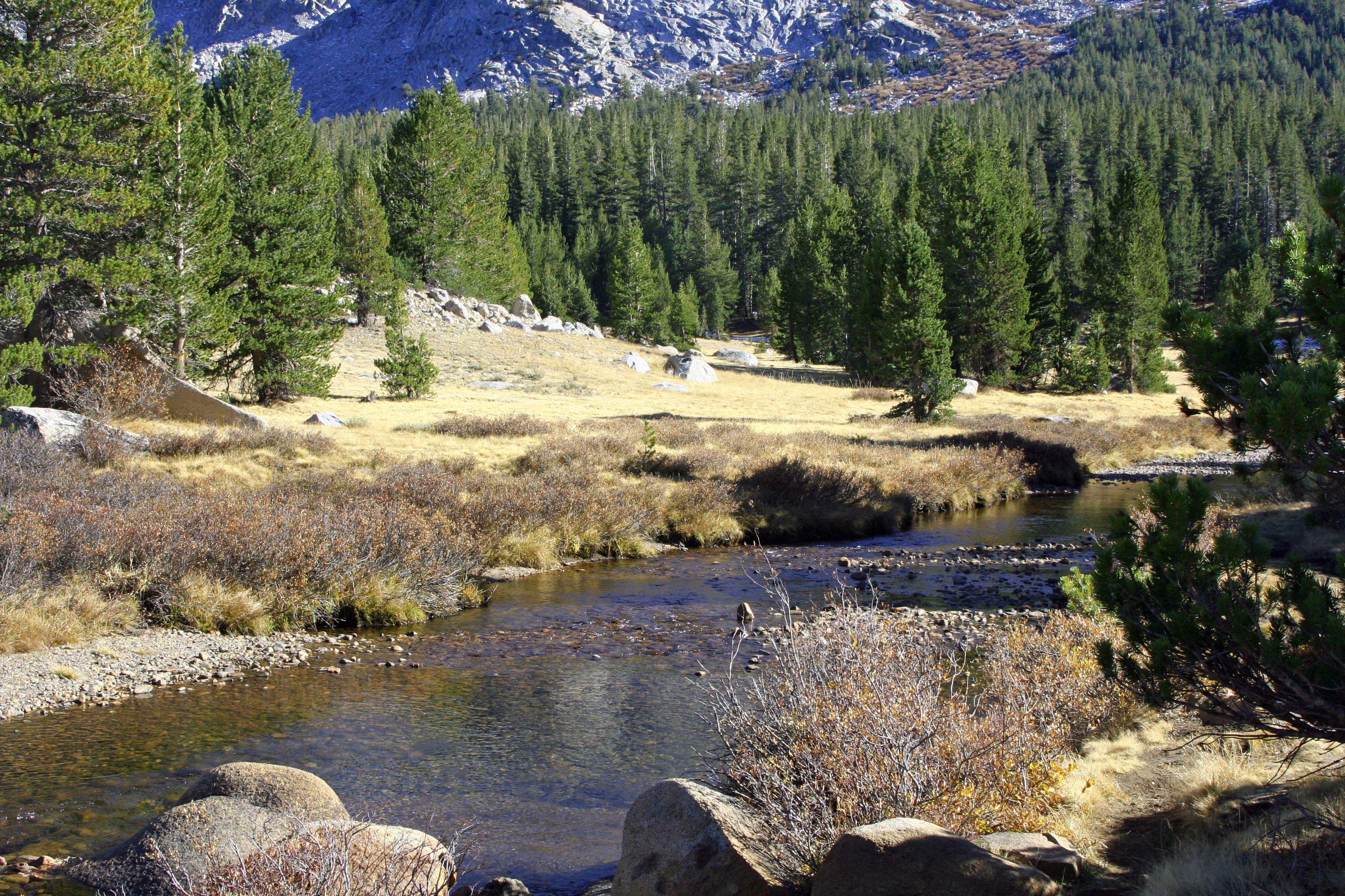 Tuolumne Meadows, Yosemite National Park, California