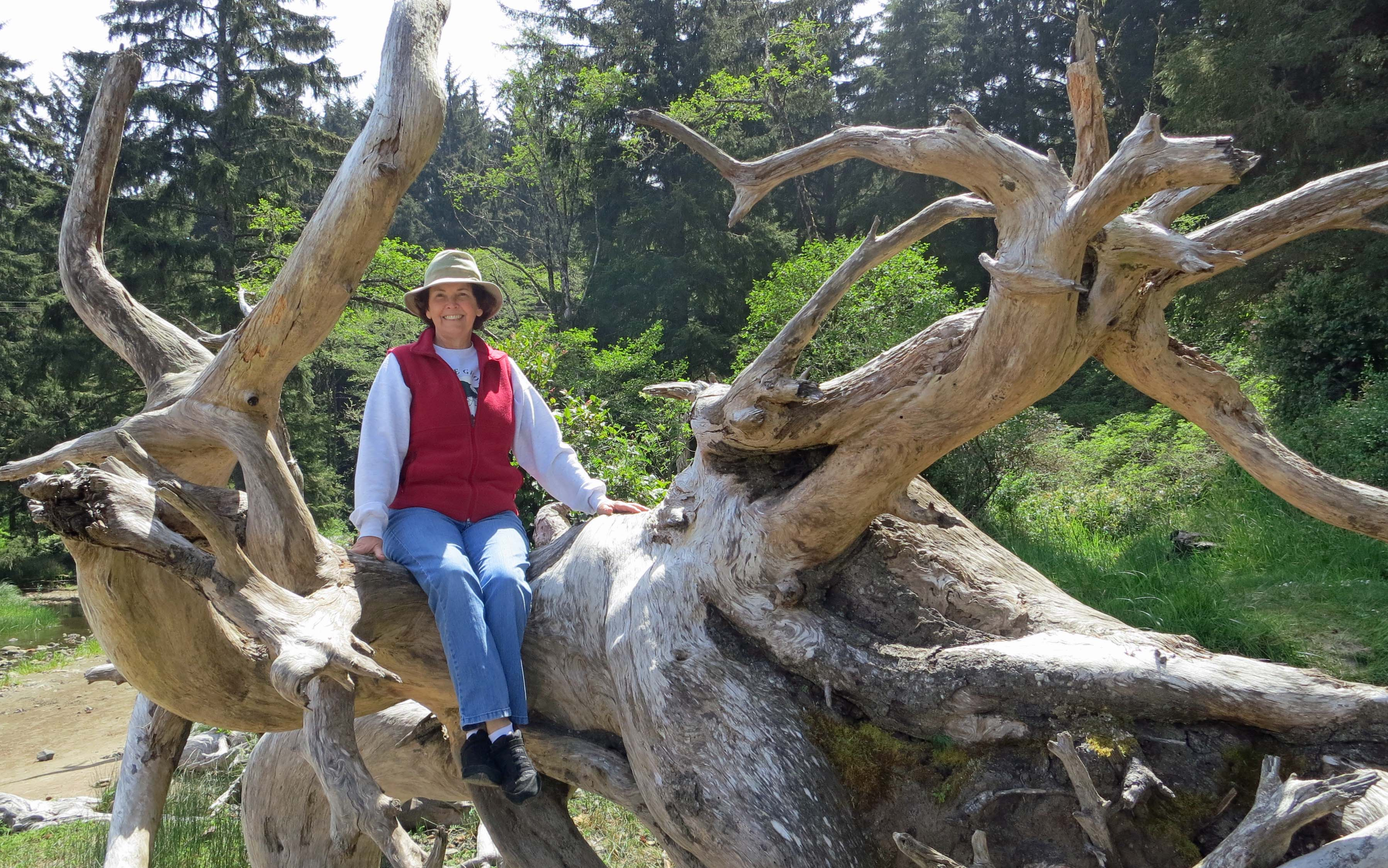 Peggy Mekemson and tree roots on Oregon Coast.