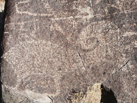 Bighorn sheep petroglyph at Three Rivers Petroglyph site in southern New Mexico.