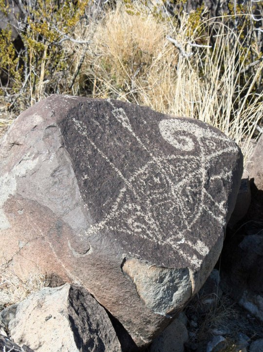 Bighorn sheep petroglyph with arrows at Three Rivers Petroglyph site in southern New Mexico.