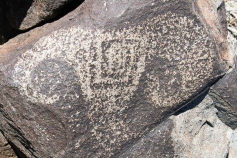 Bighorn sheep petroglyph founf at Three Rivers Petroglyph site in southern New Mexico.
