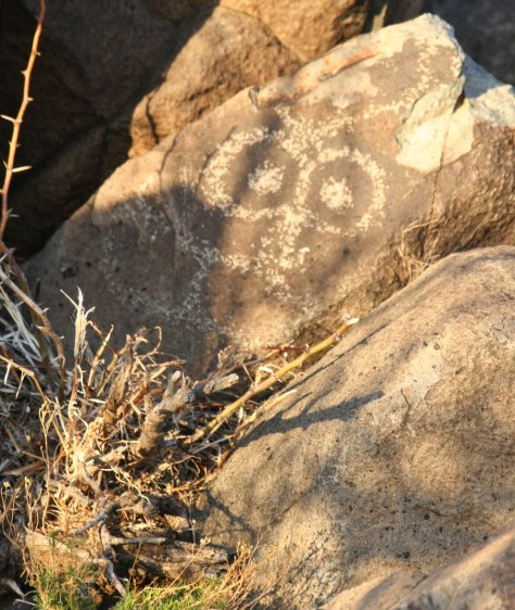 Buggy eyed petroglyph at Three Rivers Petroglyph site.