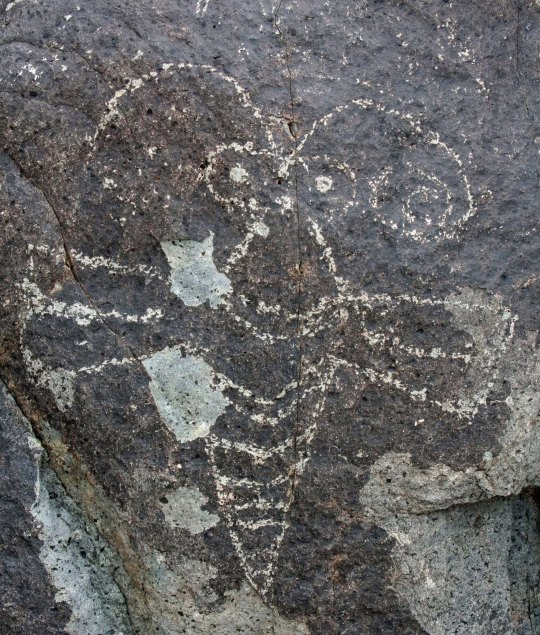 Butterfly petroglyph at Three Rivers Petroglyph site.
