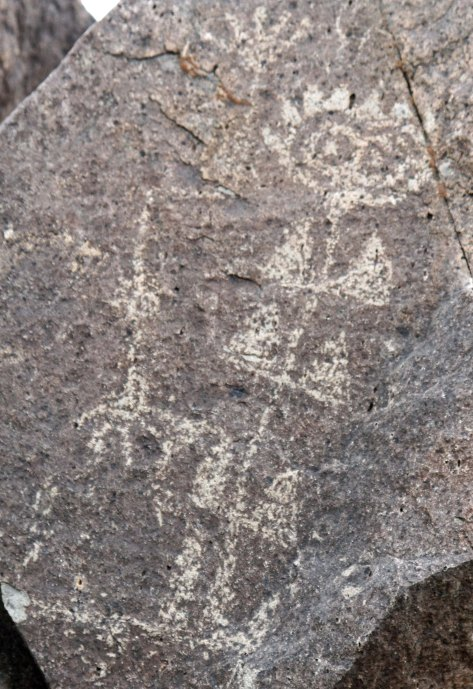 Petroglyph from Three Rivers Petroglyph site in southern New Mexico.