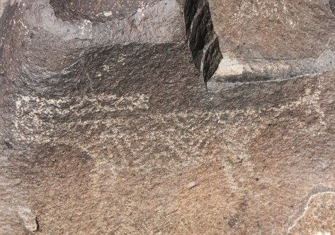 Another mountain lion petroglyph. As to why the big cats have there tail extended over their backs, I don't have a clue. Any ideas?