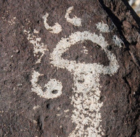 Possible petroglyph of cougar print with claws extended at Three Rivers Petroglyph site.