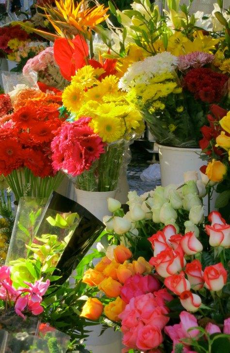 Lisbon flower stall