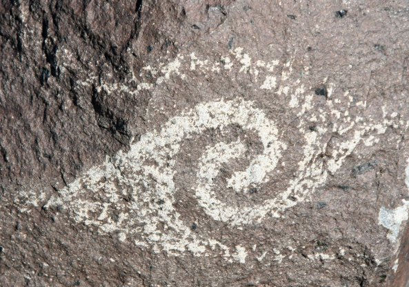 Spiral petroglyph at Three Rivers Petroglyph site.