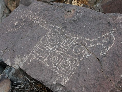 Horse petroglyph from Three Rivers Petroglyph site in southern New Mexico.