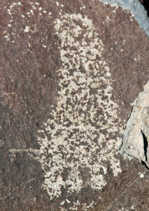Human foot print found at Three Rivers Petroglyph site in Southern New Mexico.
