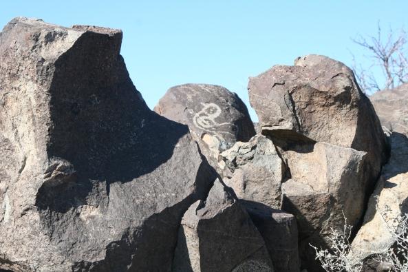 A small, nondescript bird pecks away on a rock.