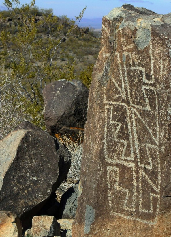 Geometric petroglyph found at Three Rivers Petroglyph site in southern New Mexico.