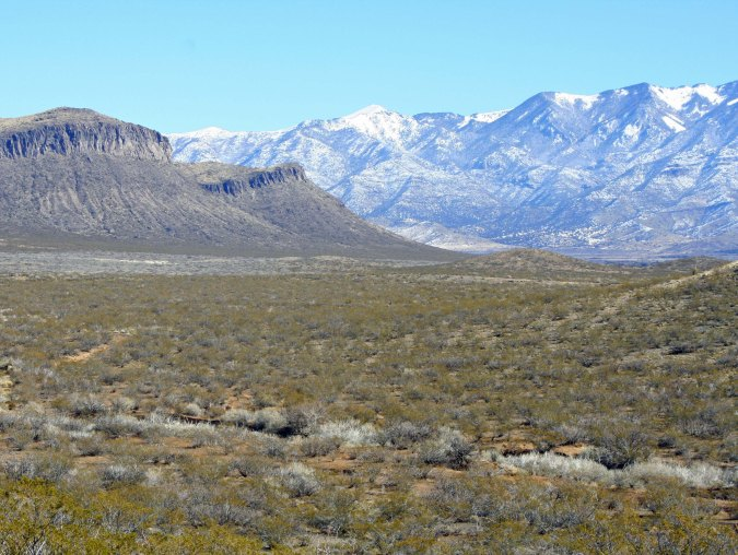 Three Rivers Petroglyph site in southern New Mexico with Sacramento Mountains providing the backdrop.