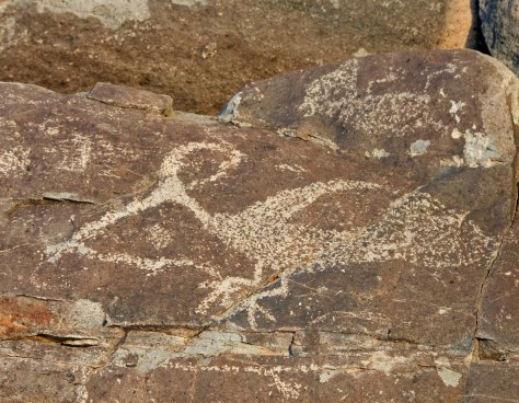 Petroglyph of roadrunner and snake at Three Rivers petroglyph site in southern New Mexico.