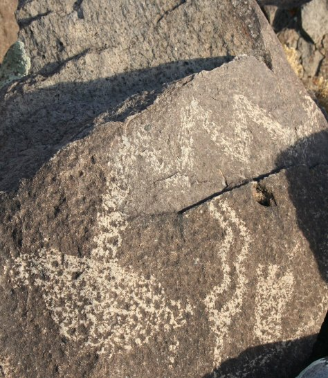 Petroglyph snake with large head in Three Rivers Petroglyph site.