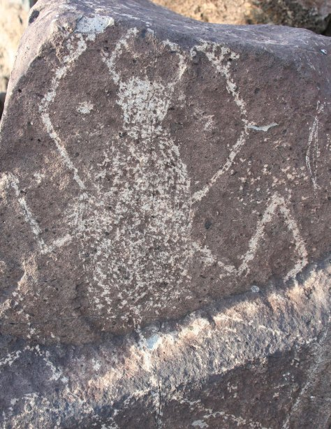 Spider petroglyph at Three Rivers Petroglyph site.