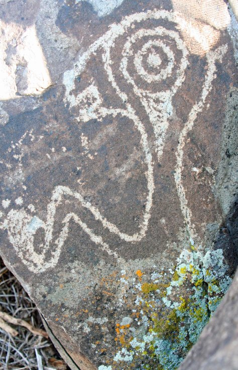 Strange petroglyph from Three Rivers Petroglyph site in Southern New Mexico.
