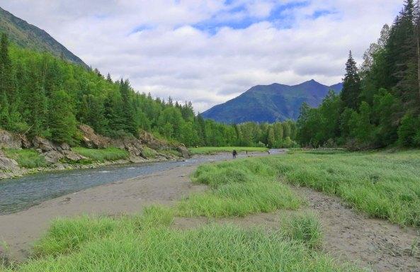 Salmon fishing on the Bird River in Alaska.