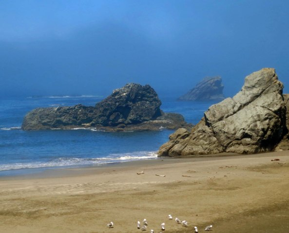 Fog rolls in at Harris State Beach  near Brookings, Oregon.