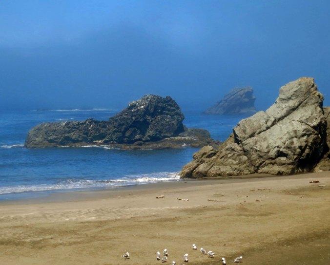 Fog rolls in at Harris State Beach  near Brookings, Oregon.