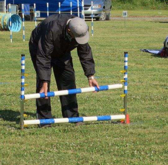 Dog agility trials at Quesnel BC