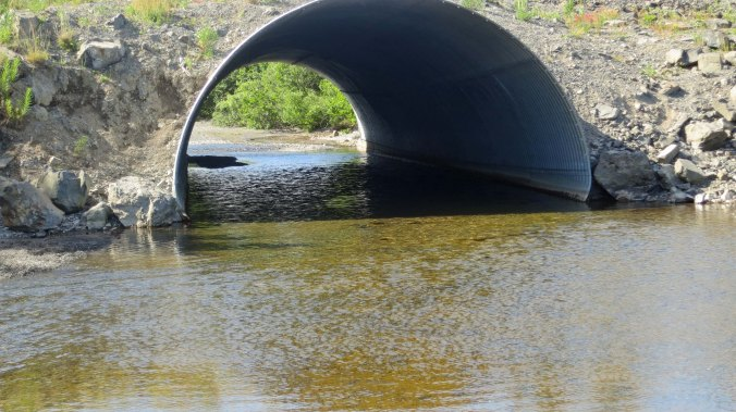 The Chiniak River flows under the road through this culvert. Salmon were plateful on both sides. While we were fishing downstream on this side of the culvert, the bear was fishing upstream.