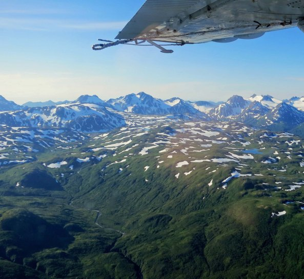 Kodiak is a beautiful island ranging (in the summer) from intensely green hills to glacier covered mountains. I took this photo out the window of our plane as we flew over the Island.