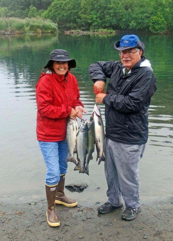 Pink salmon caught on the Buskin River in Kodiak, Alaska.