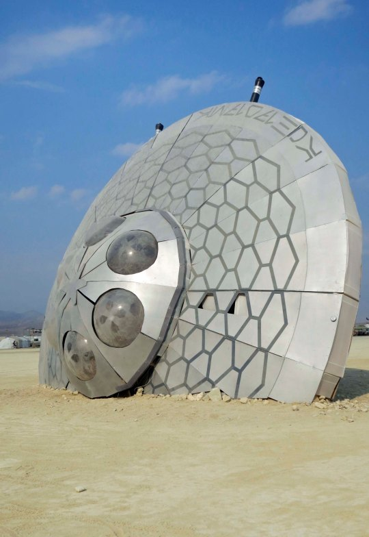 Given this flying saucer that crashed in the Black Rock Desert during Burning Man 2013, It's quite possible that aliens were wandering our street.