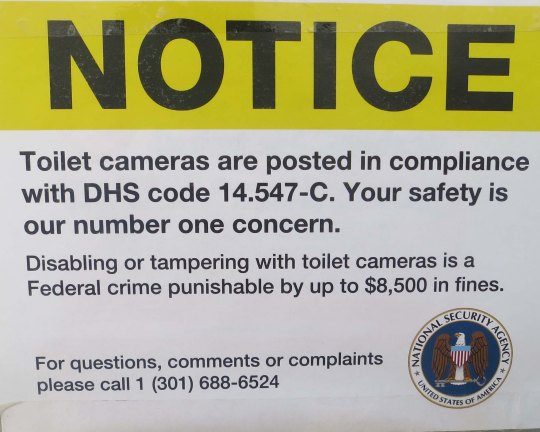 There is a substantial police presence at Burning Man, but NSA cameras in the toilets... (grin)