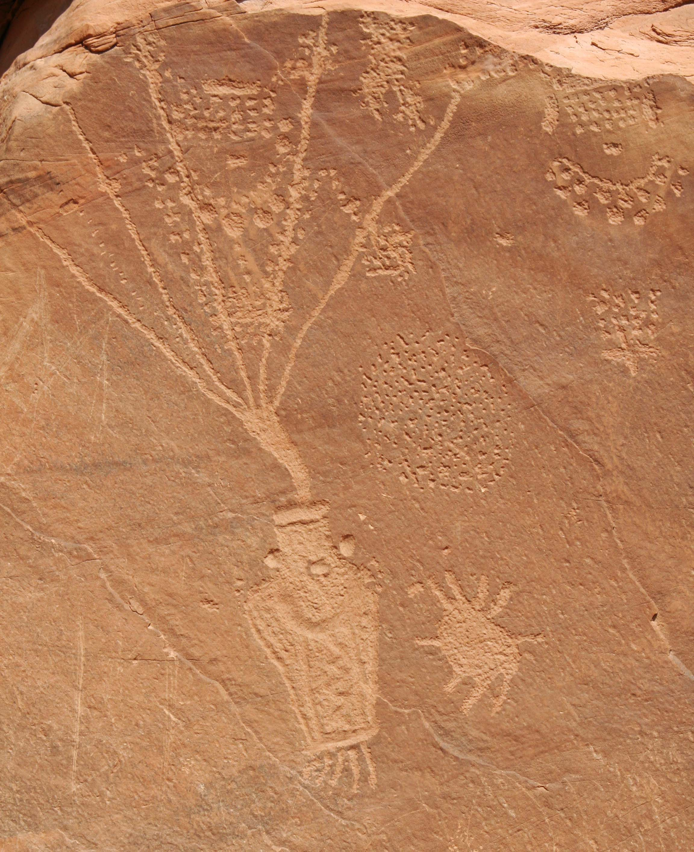 Dinosaur National Monument petroglyph.