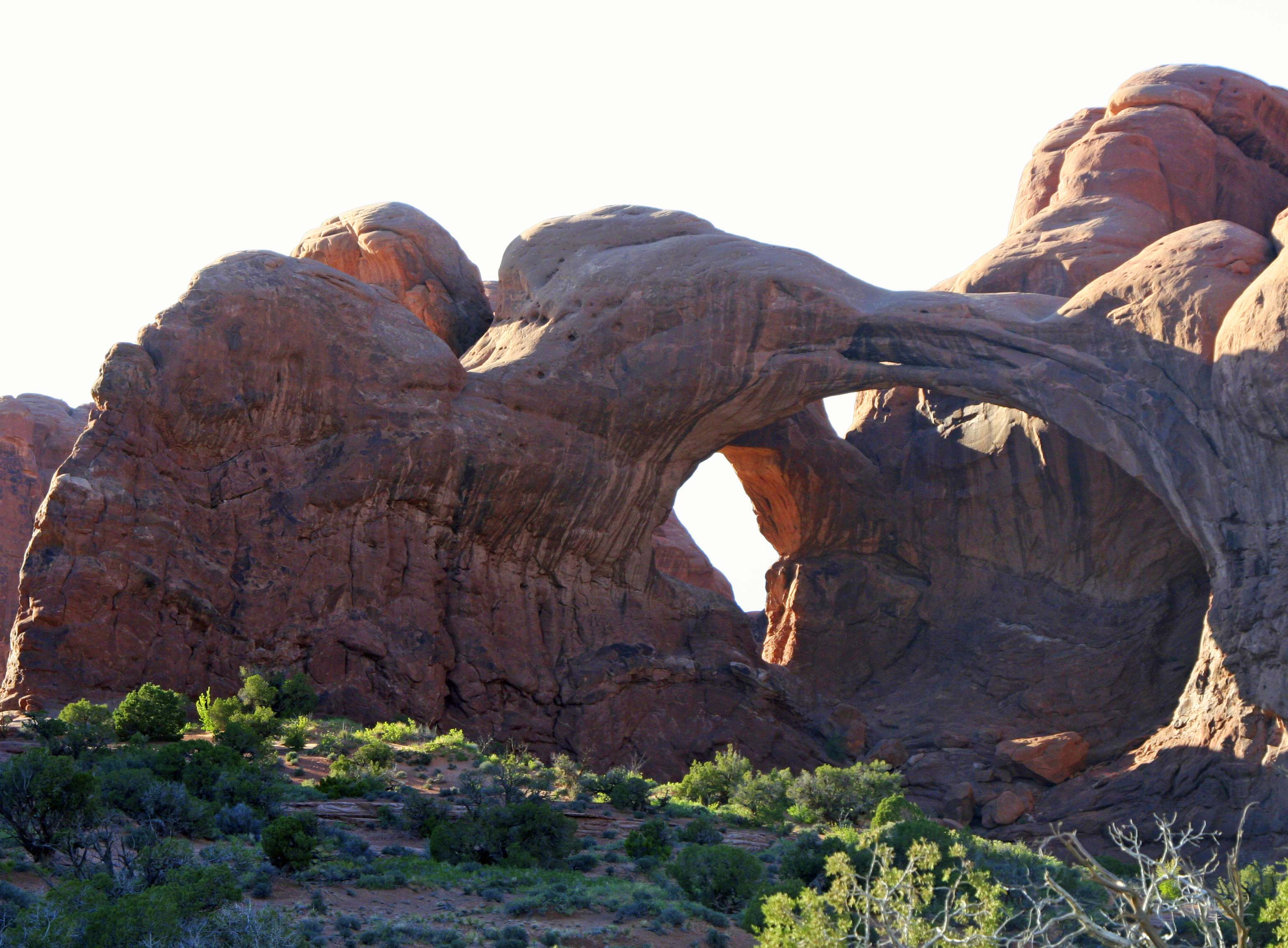 Photo of joining arches at Arches National Park. Photo by Curtis Mekemson.