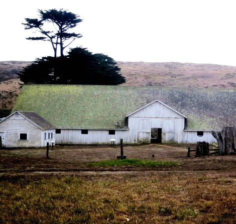 Photo of barn at Pierce Ranch, Pt. Reyes National Seashore.  Photo by Curtis Mekemson.