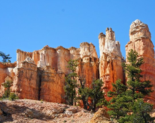 Bryce Canyon photograph by Curtis Mekemson.