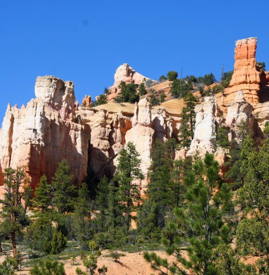 Bryce Canyon photo by Curtis Mekemson.