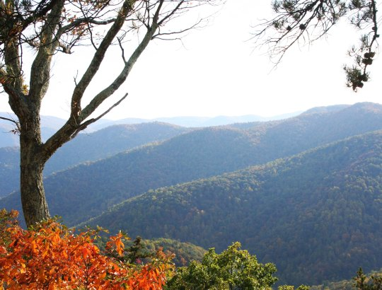Fall photo of Blue Ridge Mountains by Curtis Mekemson.