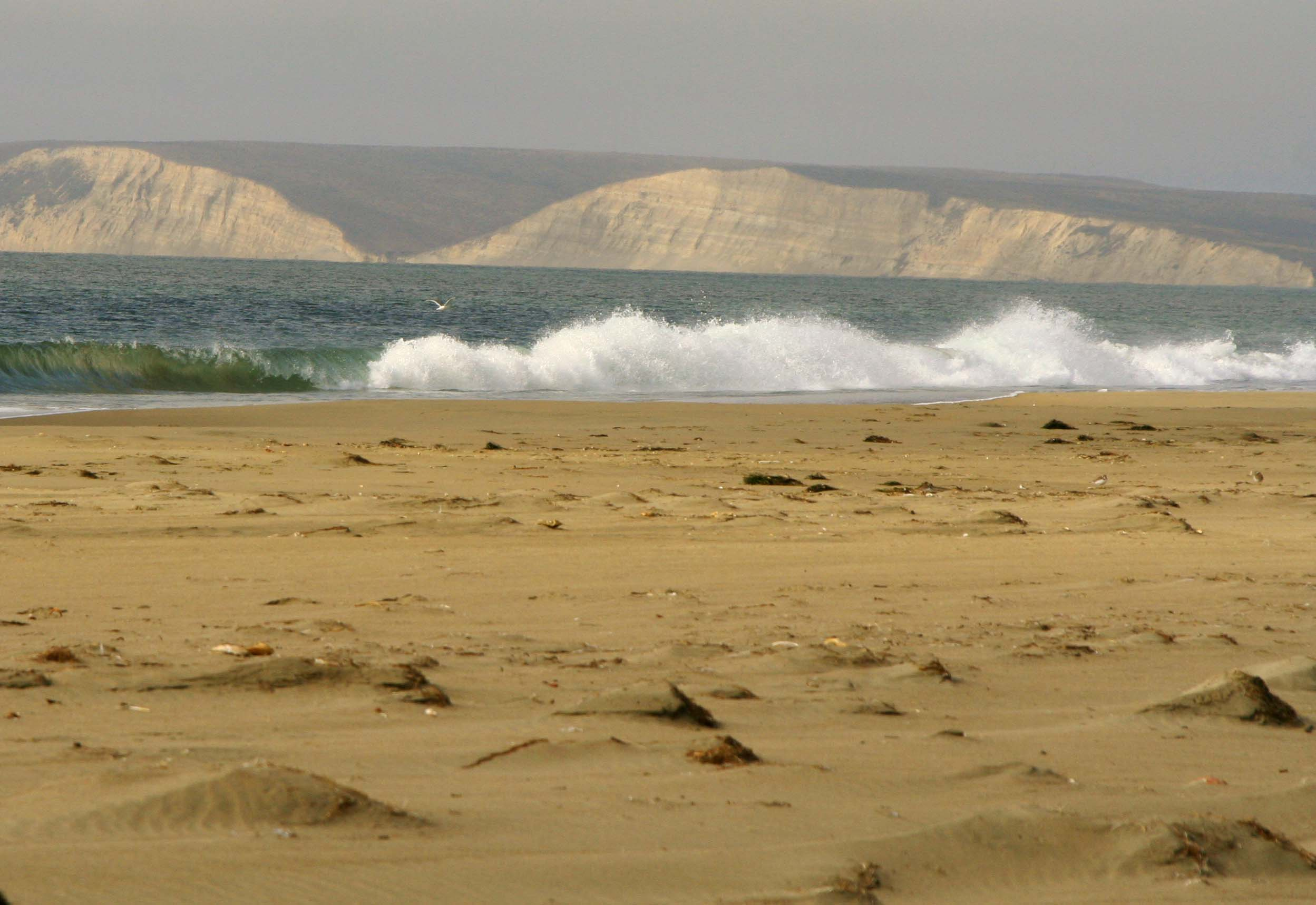 Limantour Beach at Pt. Reyes National Seashore.