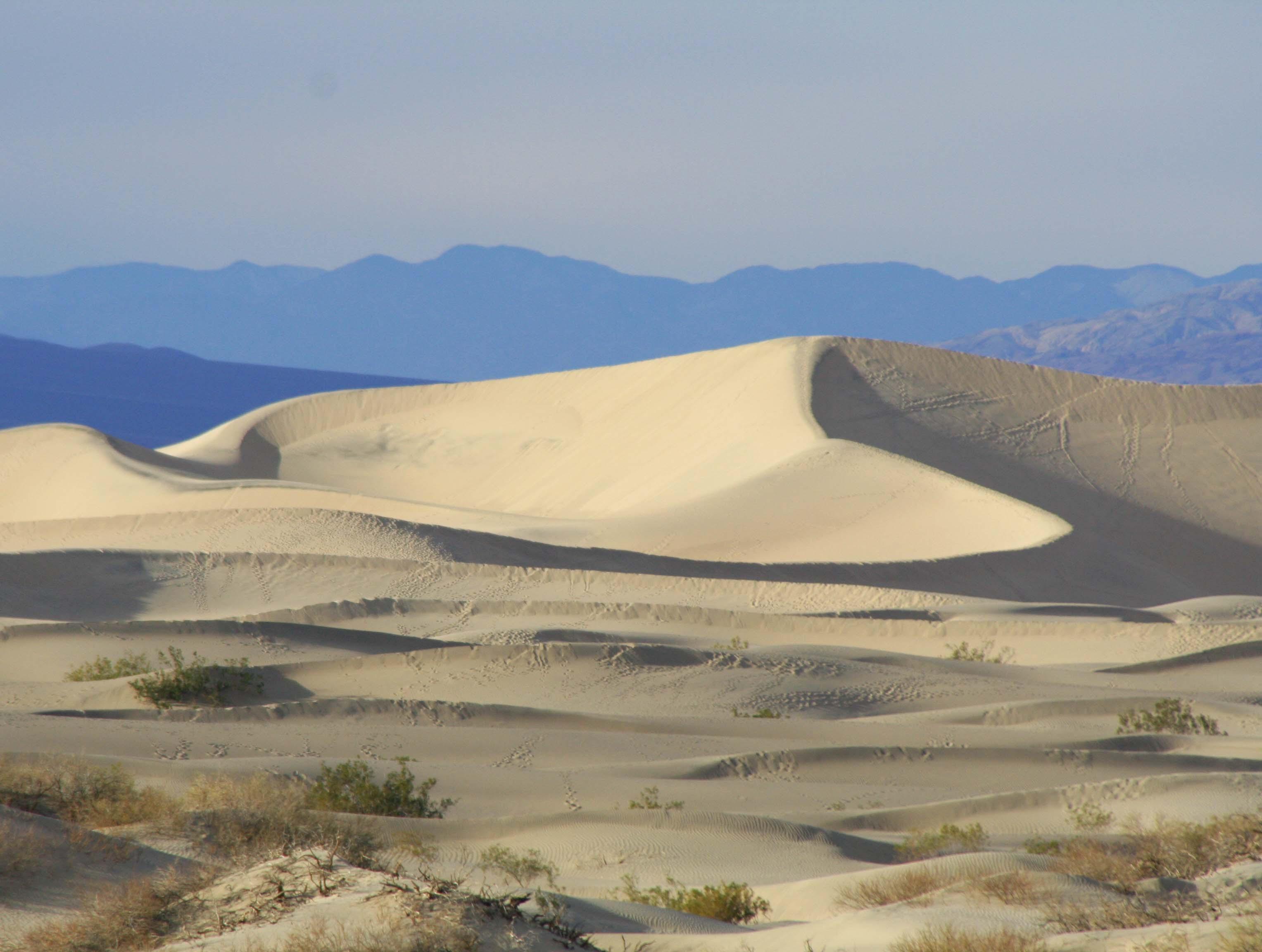 Sand dunes in Death Valley. Photo by Curtis Mekemson.