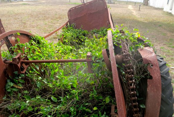 Old farming equipment at Pierce Ranch on Pt. Reyes National Seashore. Photo by Curtis Mekemson.