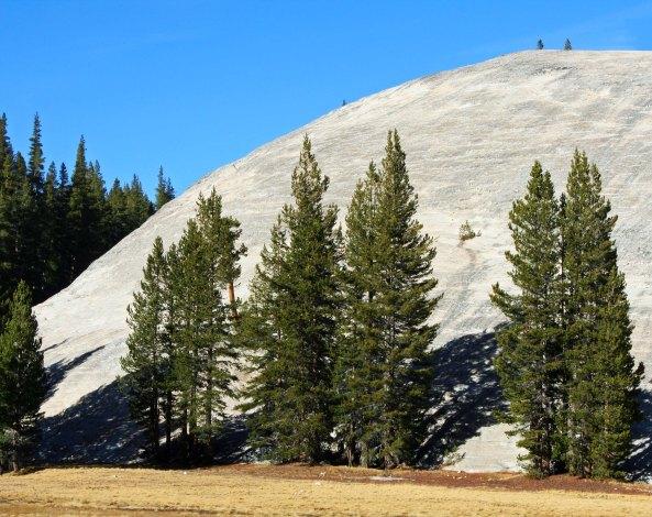 Granite in Yosemite National Park. Photo by Curtis Mekemson.